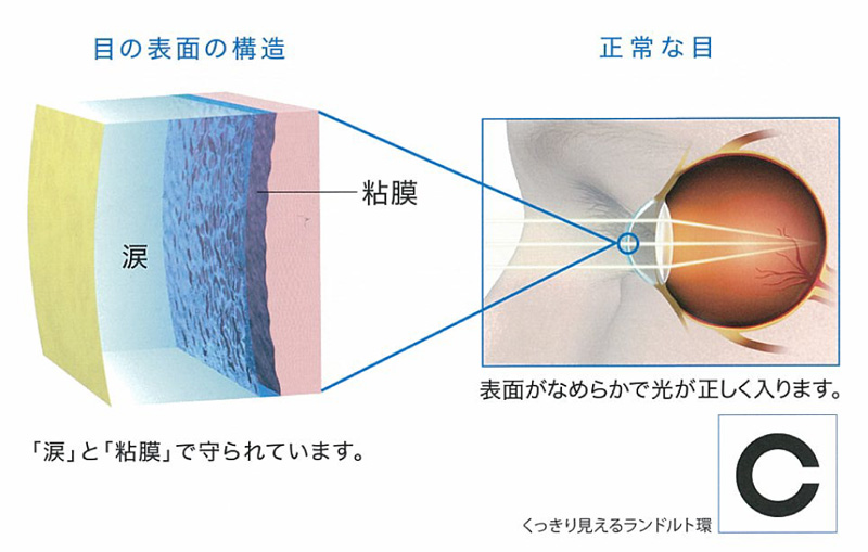 「涙」と「粘膜」が目の表面を守っています!